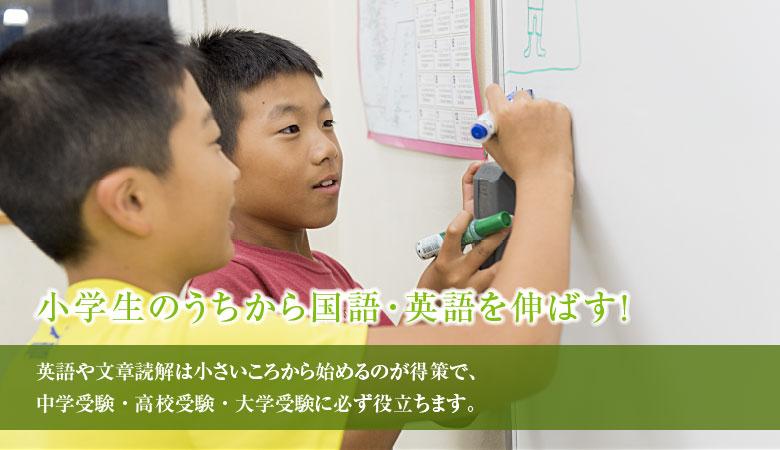 小学生のうちから国語・英語を伸ばす!英語や文章読解は小さいころから始めるのが得策で、中学受験・高校受験・大学受験に必ず役立ちます。